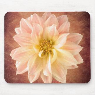 Flor rosado de la flor de la dalia floral alfombrilla de ratón
