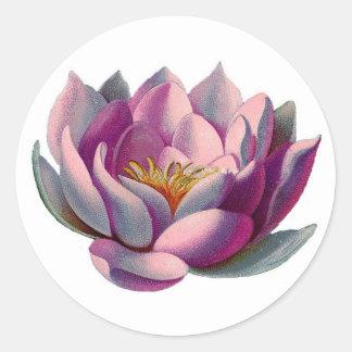 Flor rosado de Lotus Etiqueta Redonda