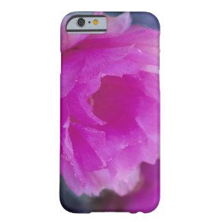 Flor rosado del cactus de erizo (Echinocereus Funda De iPhone 6 Barely There