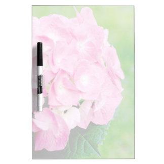 Flor rosado del Hydrangea Pizarras Blancas