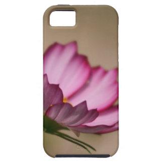 Flor rosado del picote del cosmos iPhone 5 fundas