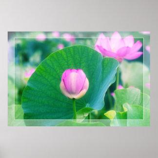 Flor rosado hermoso de la hoja del verde de la póster