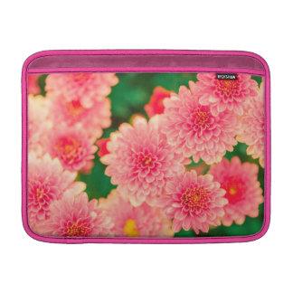 Flor rosado hermoso de las flores de las dalias fundas MacBook