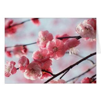Flor rosado tarjeta de felicitación