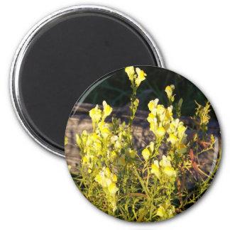 Flor salvaje amarilla imán redondo 5 cm