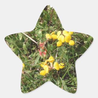 Flor salvaje amarilla pegatina en forma de estrella