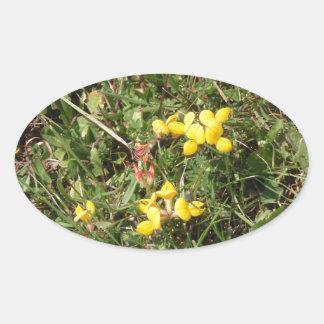 Flor salvaje amarilla pegatina ovalada
