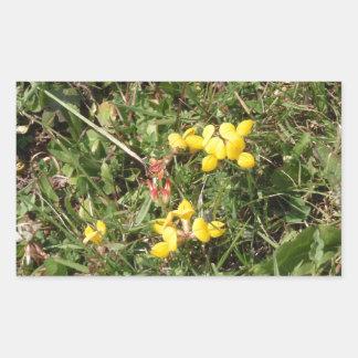 Flor salvaje amarilla pegatina rectangular