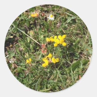 Flor salvaje amarilla pegatina redonda