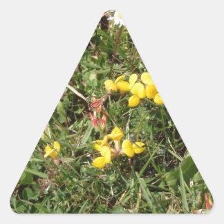 Flor salvaje amarilla pegatina triangular