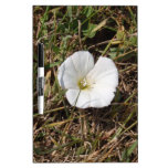 Flor salvaje blanca pizarra