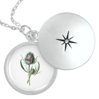 Flor salvaje de la antigüedad del cardo del escocé pendiente