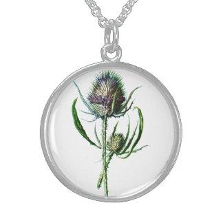 Flor salvaje de la antigüedad del cardo del escocé collares de plata esterlina