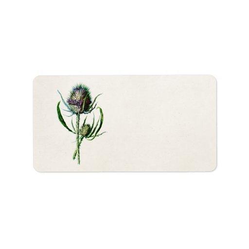 Flor salvaje del cardo escocés viejo del vintage 1 etiqueta de dirección