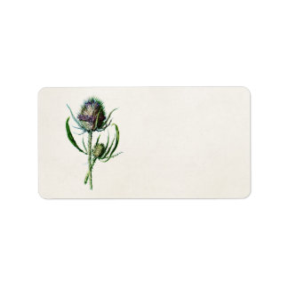 Flor salvaje del cardo escocés viejo del vintage etiqueta de dirección
