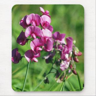Flor salvaje del guisante de olor alfombrilla de ratón