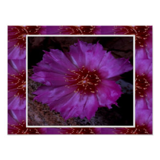 Flor salvaje del rosa sedoso de la chispa:  Greein Posters
