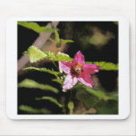 Flor salvaje del Salmonberry de la acuarela Tapete De Raton
