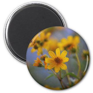 Flor salvaje imán redondo 5 cm