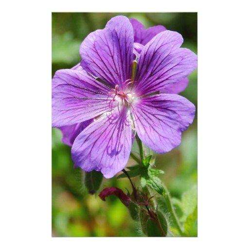 Flor salvaje púrpura papeleria