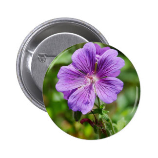 Flor salvaje púrpura pins