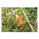 Flor salvaje roja y amarilla manteles individuales