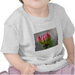 Flor salvaje rosada bud.jpg camisetas