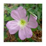 Flor salvaje rosada de la onagra azulejo cuadrado pequeño