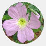 Flor salvaje rosada de la onagra etiqueta redonda