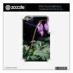 Flor salvaje skins para iPod touch 4G