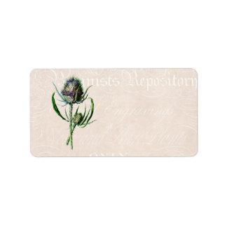 Flor salvaje vieja del cardo del escocés del etiquetas de dirección