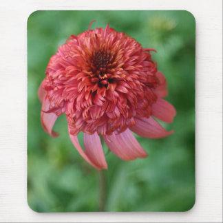 Flor secreto de la flor de la margarita anaranjada mousepad