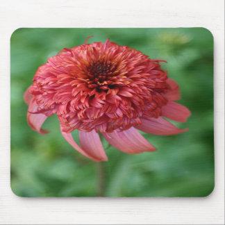 Flor secreto de la flor de la margarita anaranjada tapete de ratones