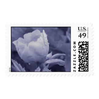 flor sello