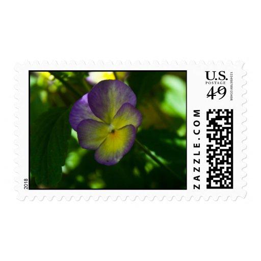Flor Sello Postal