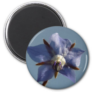 Flor silvestre imán redondo 5 cm