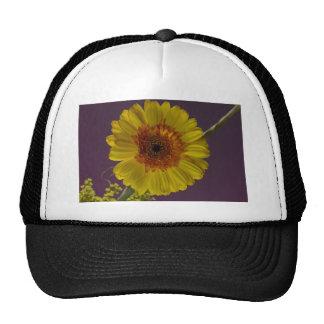 Flor soleada gorras de camionero