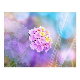 Flor soñadora postal