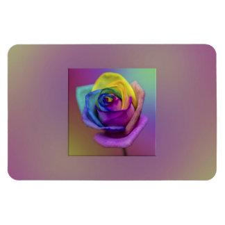 Flor subió arco iris imanes flexibles