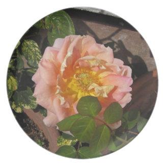 Flor subió melocotón plato de comida