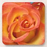 Flor subió puesta del sol anaranjada en la posavaso