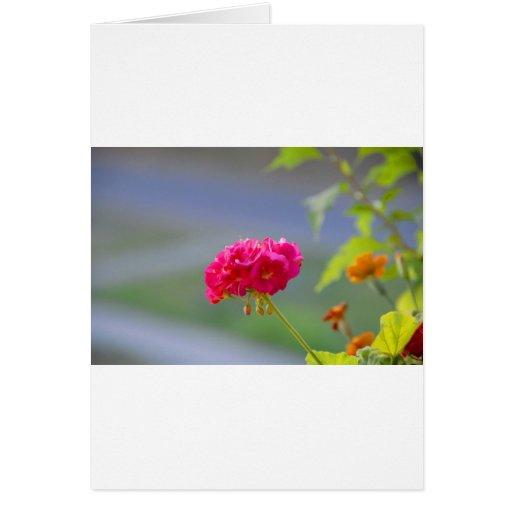 flor tarjeta de felicitación