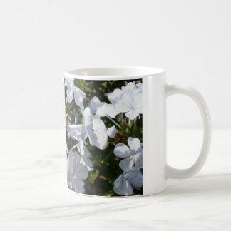 Flor Taza Básica Blanca