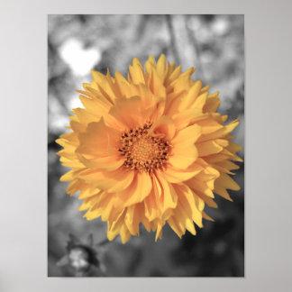 Flor teñida amarillo poster