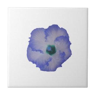 Flor teñida azul del hibisco azulejo cuadrado pequeño
