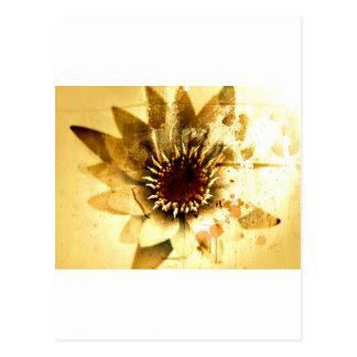 Flor terrosa de la naturaleza el | tarjetas postales