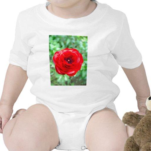 flor trajes de bebé