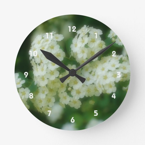 Flor trepador blanca salvaje de los rosas reloj redondo mediano