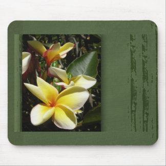 Flor tropical amarilla del plumeria alfombrillas de raton
