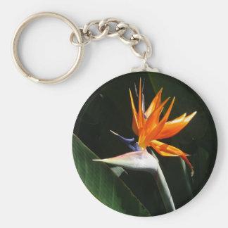 Flor tropical anaranjada de la ave del paraíso llavero redondo tipo pin